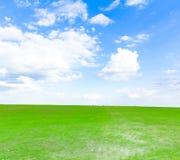 Grass Horizon Stock Images