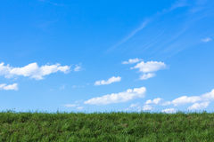 Grass horizon Royalty Free Stock Image