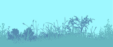 Grass. Horizontal seamless pattern Royalty Free Stock Photography