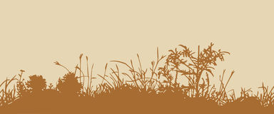 Grass. Horizontal seamless pattern. Great horizontally seamless vector background with a silhouette of grass or clump or undergrowth Royalty Free Stock Photo