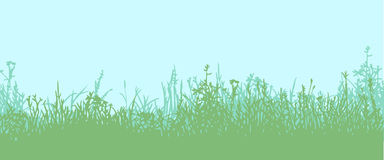 Grass. Horizontal seamless pattern. Great horizontally seamless vector background with a silhouette of grass or clump or undergrowth Stock Photography