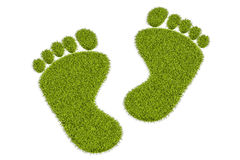Grass human footprints, 3D rendering Royalty Free Stock Photography