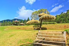 Grass hut Stock Images