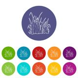 Grass icon, outline style. Grass icon. Outline illustration of grass vector icon for web Royalty Free Stock Photography
