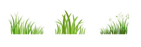 Element Eco green grass Royalty Free Stock Photos