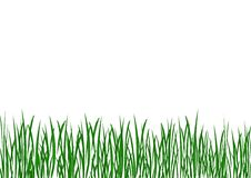 Grass illustration Royalty Free Stock Image