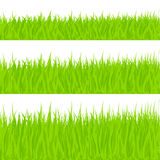 Grass Illustration stock illustration
