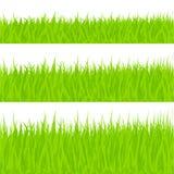 Grass Illustration Stock Photos