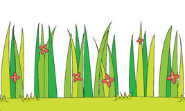 Grass illustration Royalty Free Stock Photography