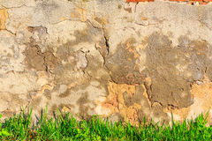Grass infront of scratched and cracked wall Royalty Free Stock Photos