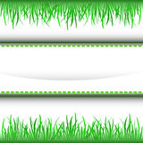Grass inner green stripe frame  Royalty Free Stock Image