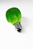 Grass inside light bulb on white, clean energy Royalty Free Stock Image