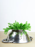 Grass inverted colander Stock Photo