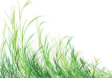 Free Grass Is Greener Royalty Free Stock Photo - 14560425