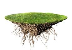 Grass island Stock Photography