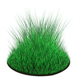 Grass Isolated. Patch of green 3d grass, over white, isolated Royalty Free Stock Photo