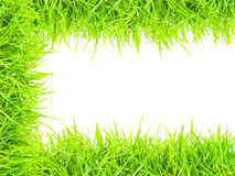 Grass isolated border C. Green grass isolated border C Royalty Free Stock Images