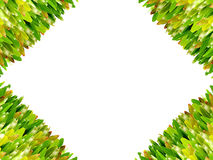 Grass isolated for  text  frame. And background Stock Photo