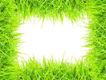 Grass isolated for text frame and picture.  Royalty Free Stock Photography