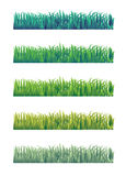 Grass. Isolated on a white background Royalty Free Illustration