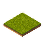 Grass Isometric Illustration Stock Images