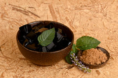 Grass Jelly (Mesona chinensis), vegetable jelly, black in color, eaten with sugar. Grass Jelly (Mesona chinensis), plants, flowers, herbs have medicinal royalty free stock photo