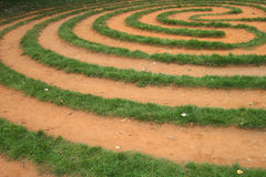 Grass labyrinth Stock Images