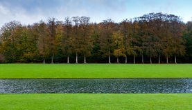 Grass, lake and beech tree wood Royalty Free Stock Photography