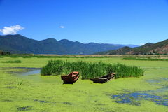 Grass lake in Lugu lake , China. The landscape of Grass lake,Scenic view of Lugu Lake with mountains in background, Yunnan Province, China Stock Images