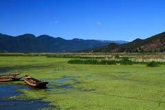 Grass lake in Lugu lake , China Stock Images