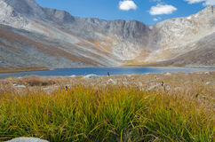 Grass and Lake on Mount Evans. Grasses in front of a mountain lake near Mount Evans in Colorado stock image
