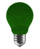 Grass lamp Royalty Free Stock Photos