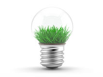 Grass in a lamp bulb - ecology concept Stock Images
