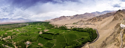 Grass land of ladakh Royalty Free Stock Image