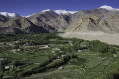 Grass land of ladakh, India Royalty Free Stock Image