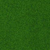 Grass landscape. Green grass landscape and clear blue sky Vector Illustration