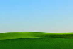 Grass landscape. Green grass landscape and clear blue sky Royalty Free Illustration