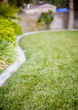 Grass landscaped yard Royalty Free Stock Photos