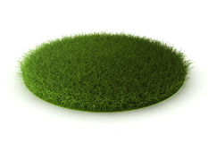 Grass lawn Royalty Free Stock Image