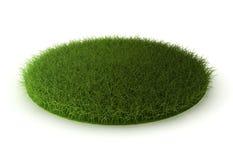 Grass lawn. 3d render on white Stock Illustration