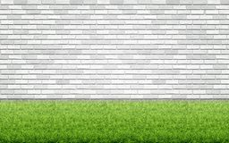 Grass Lawn And White Brick Wall. Stock Images