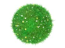 Grass lawn ball. 3d ball of grass and flower lawn Royalty Free Stock Photo