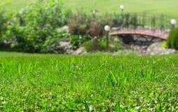 Grass lawn closeup. Decorative bridge and lanterns. Landscape design concept.  Stock Photo