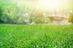 Grass lawn closeup. Decorative bridge and lanterns. Landscape design concept. Summer sunny background with rays Stock Photo