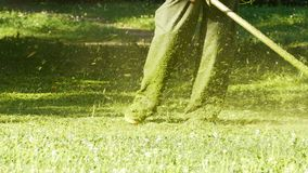 Grass Lawn Mow. Process of lawn mowing, concept of mowing the lawn, lawnmower cutting grass with gardening tools stock footage
