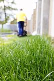 Grass and lawn mowing Stock Photo