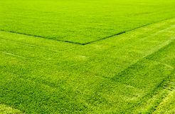 Grass lawn shaved grass. Fresh cut grass, grass lawn in a field, shaved with lawnmowers stock images