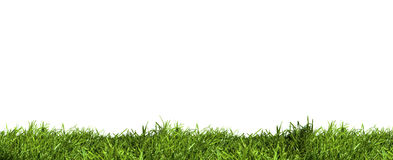 Grass Layer Stock Photos