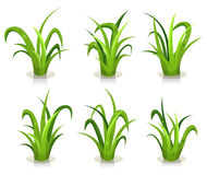 Grass Leaves Set Stock Images