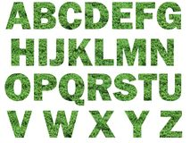 Grass lettering. Alphabets that have  grass as a background detail. These fonts are franklin bold, 850 pixel sized. The background is white to facilitate easy Royalty Free Stock Photography